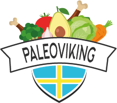 PaleoViking