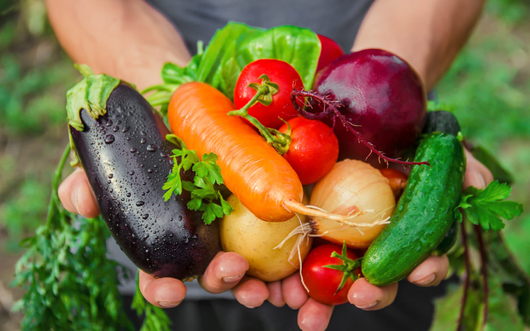 5 façons amusants pour consommer plus de légumes