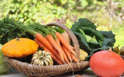 Pourquoi les produits locaux et de saison sont importants pour votre santé